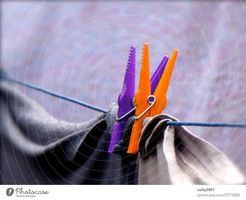 Waschtag mit bunten Wäscheklammern... Paar 2 Wäscheleine orange lila farbenfroh waschen aufhängen trocknen Haushalt Wäsche waschen Sauberkeit Haushaltsführung