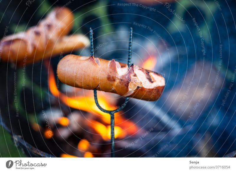Fleischwurst auf einem Spieß über einem Feuerkorb. Nahaufnahme spieß Glut orange heiß Lagerfeuer feuerkorb gebraten Sommer Wärme Flamme brennen Feuerstelle