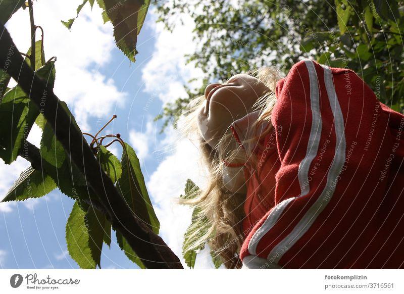 Kind schaut zwischen Äste in den Himmel Kirschbaum Sommerzeit Sommertag sommerlich Baum in den himmel schauen Ferien Glück glücklich Natur Mädchen Kindheit