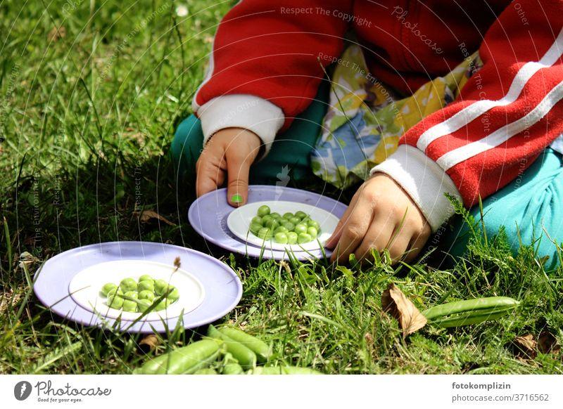 Kinderhände halten Teller  mit grünen frischen Erbsen Erbsenzähler Erbsenschoten Gesunde Ernährung Vegane Ernährung Gesundheit Foodfotografie Gemüse Bioprodukte