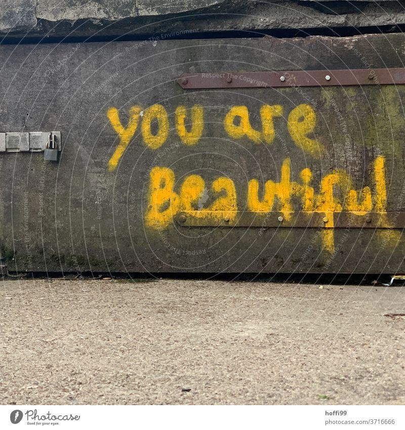 Du bist schön - you are beautiful Graffiti Botschaft Wand Aussage aussagekräftig Schriftzeichen Zeichen Schmiererei Fassade Text Tag Buchstaben Subkultur