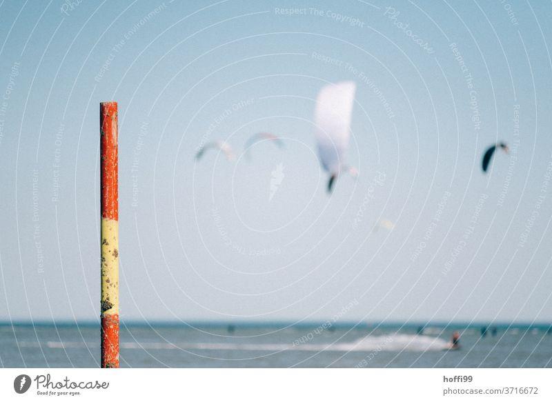 Badezonenberenzung mit Kite Surfern im Hintergrund Badestrand Strand Nordsee Kiter Kitesurfer Kitesurfen Begrenzung Badebereich Stangen Markierungslinie