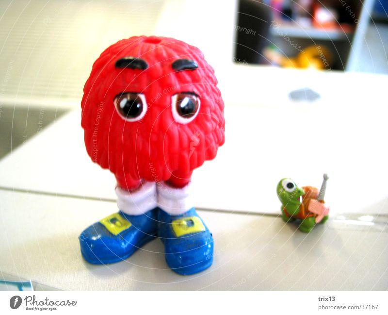 Mr. Red rot grün Schildkröte Tier Fabelwesen Augenbraue Blick Schuhe Dinge blau lustig