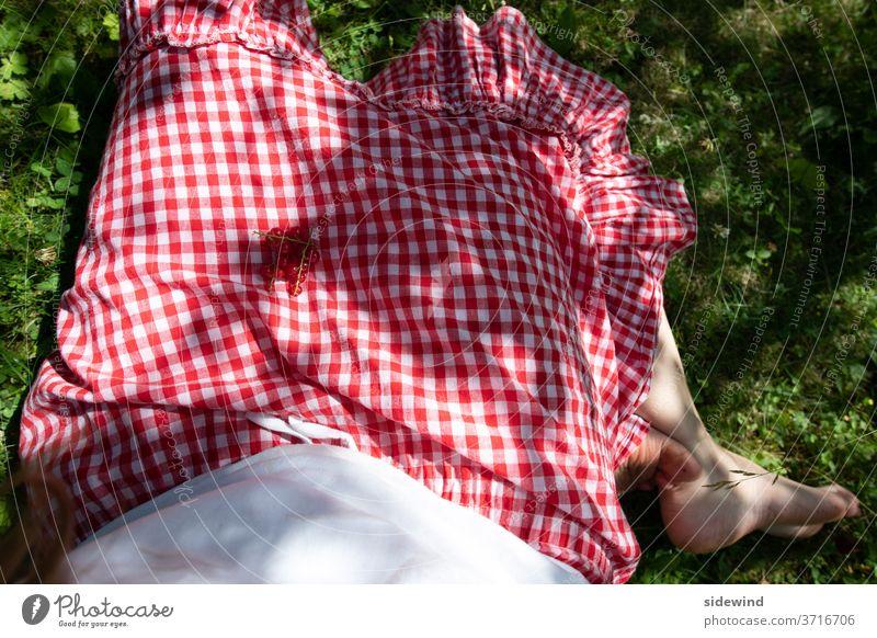 Ein Rock wie eine mit Johannisbeeren gedeckte Tischdecke kariert Picknick Kleid Sommer Früchte Tradition Rüschen Füße Barfuß Dirndl Gesundheit Außenaufnahme rot