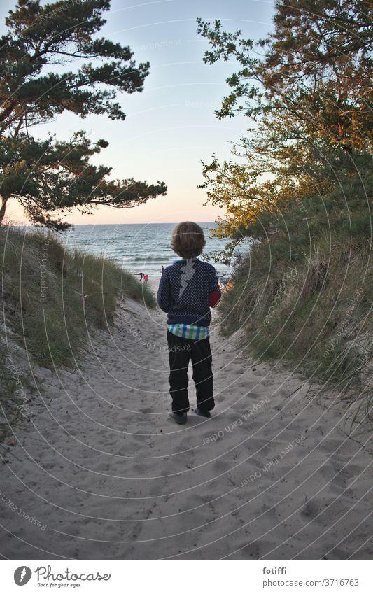 Junge am Eingang zum Sandstrand Rügen Meer Wasser Urlaub Urlaubsfoto Urlaubsstimmung Meerblick Kind verträumt sanft Ferien & Urlaub & Reisen Tourismus Küste