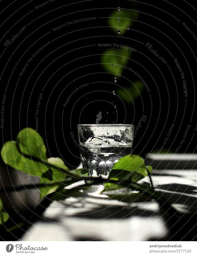 ein Glas Wasser auf einem weißen Tisch mit Sonnenstrahlen und grünen Blättern Sommer Morgen Mineral übersichtlich Strahlen Filter Hintergrund Natur frisch