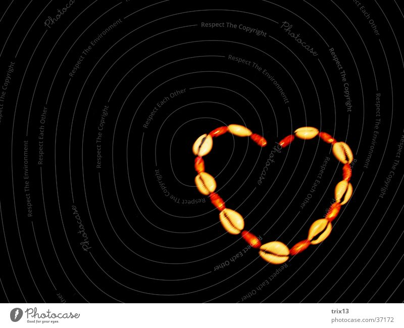 Herzkette Liebe schwarz Freundschaft Dinge Muschel Halskette
