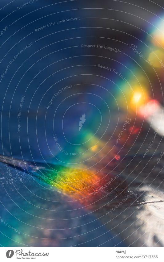 Regenbogenfarbene Erleuchtung regenbogenfarben außergewöhnlich wellig eigenwillig verrückt dunkel mehrfarbig skurril Farbfoto Außenaufnahme Experiment abstrakt