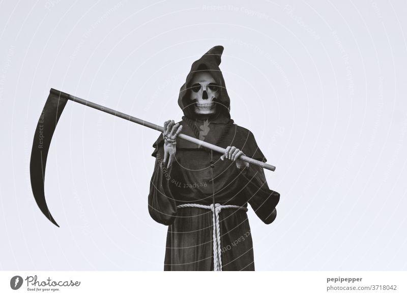 Sensenmann Tod gruselig Halloween Farbfoto Skelett Schädel Angst Mensch Kopf Todesangst bedrohlich alt Knochen Hand Kutte Pristergewand Gedeckte Farben