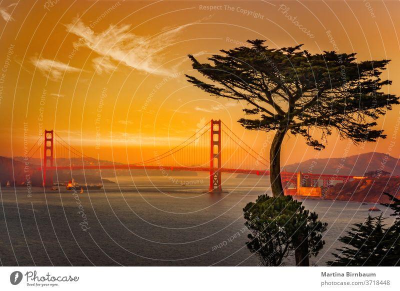 Die berühmte Golden Gate Bridge in San Francisco , von Lands End aus gesehen Brücke pazifik Kalifornien golden san francisco cavallo landet Ende Struktur