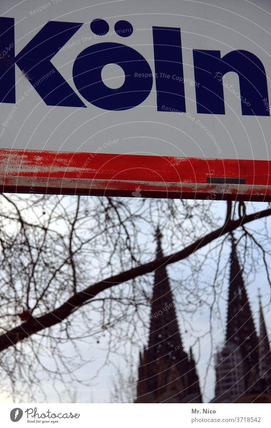 Hinweisschild Schilder & Markierungen Schriftzeichen Köln Kölner Dom Baum Sehenswürdigkeit Wahrzeichen Stadt Kirche Religion & Glaube Bauwerk Ast Domspitzen