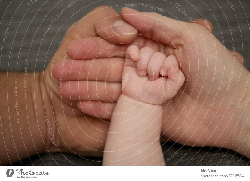 Kleine Familie Hände Hand Vater Mutter Baby Eltern Kind Liebe Familie & Verwandtschaft neugeboren Glück Papa Mama Halt Säugling klein Zuneigung Leben festhalten