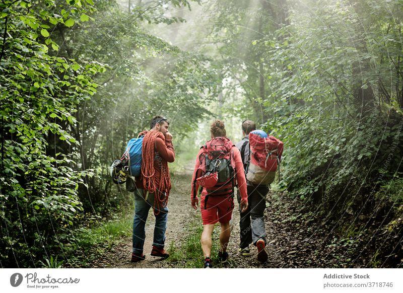 Gruppe von Wanderern mit Rucksäcken im Wald Reisender Bergsteiger Männer Spaziergang Aufsteiger Gerät Abenteuer Trekking Zusammensein Weg Unternehmen Aktivität