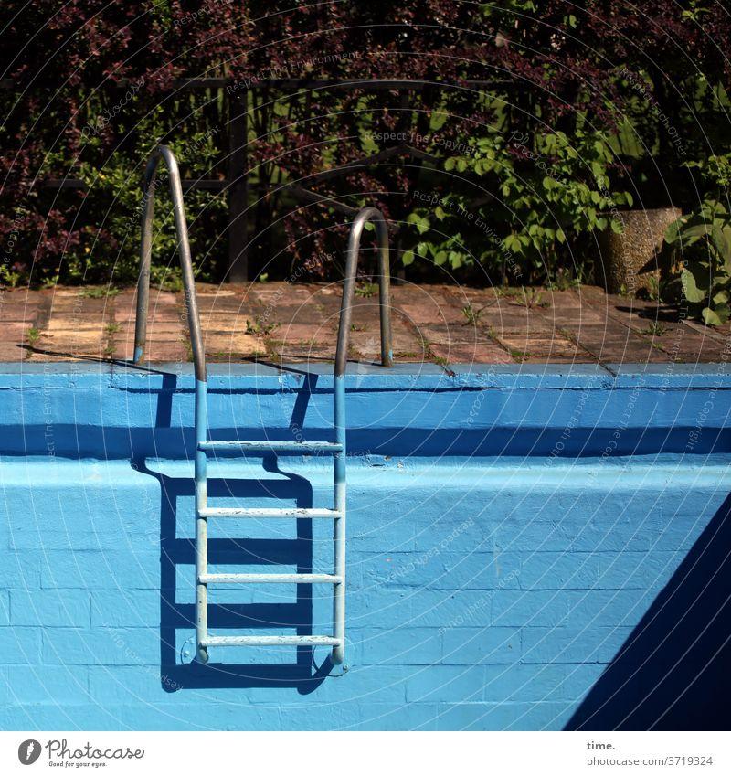 Trockendock blau schwimmbecken metall edelstahl beckenrand sonnig schatten sonnenlicht mauer wand leiter einstiegshilfe sprosse sprossenleiter garten trocken