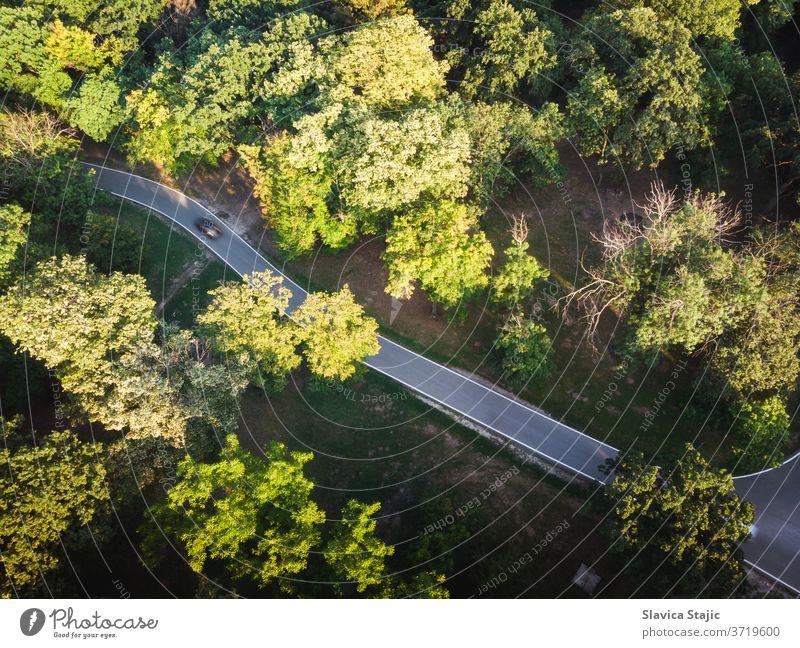 Luftaufnahme der Bergstraße im Spätsommer oben Antenne aufforsten Asphalt Hintergrund schön Botanik Ast PKW farbenfroh Land Landschaft Entwaldung Erde Öko