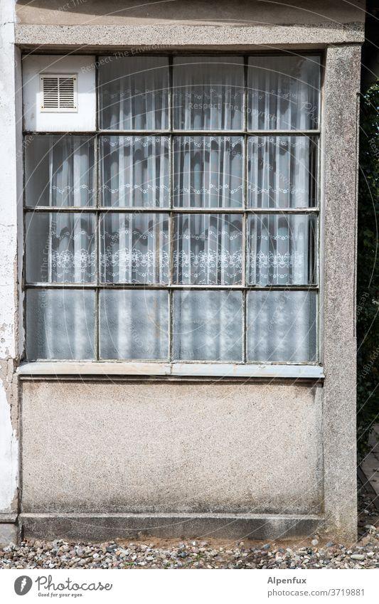 4X4 Fenster Fassade Haus Gebäude Außenaufnahme alt Wand Architektur Altstadt trist Häusliches Leben historisch Bauwerk Mauer Farbfoto Menschenleer Altbau Tag