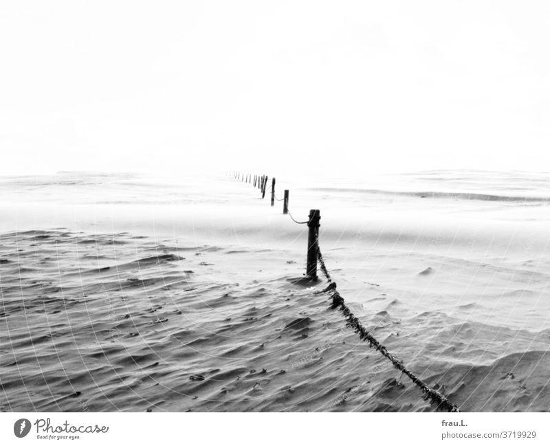 Heftiger Wind fegt über die Sanddüne, und sie wandert unbeirrt zum Horizont. Wanderdüne Küste Ostsee Polen Nationalpark Zaun Absperrung Polnische Sahara