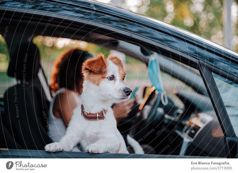 junge frau mit schutzmaske in einem auto. daneben süßer jack russell hund. Reisen und neues normales Konzept Schutzmaske Laufwerk Frau Hund PKW reisen
