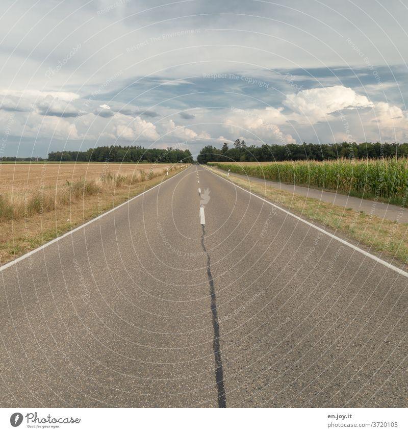 Geradeaus | Straße mit Feldern Maisfeld Horizont Himmel Mittelstreifen Wolken Weitwinkel Sommer Verkehr Verkehrswege Straßenbelag geradeaus Asphalt Ferne