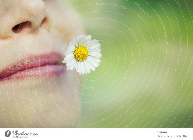 unbeschwert Gesicht Gesundheit Wohlgefühl Mensch Leben Nase Mund Lippen Frühling Sommer Blume Gänseblümchen genießen Fröhlichkeit Glück natürlich Gefühle Freude