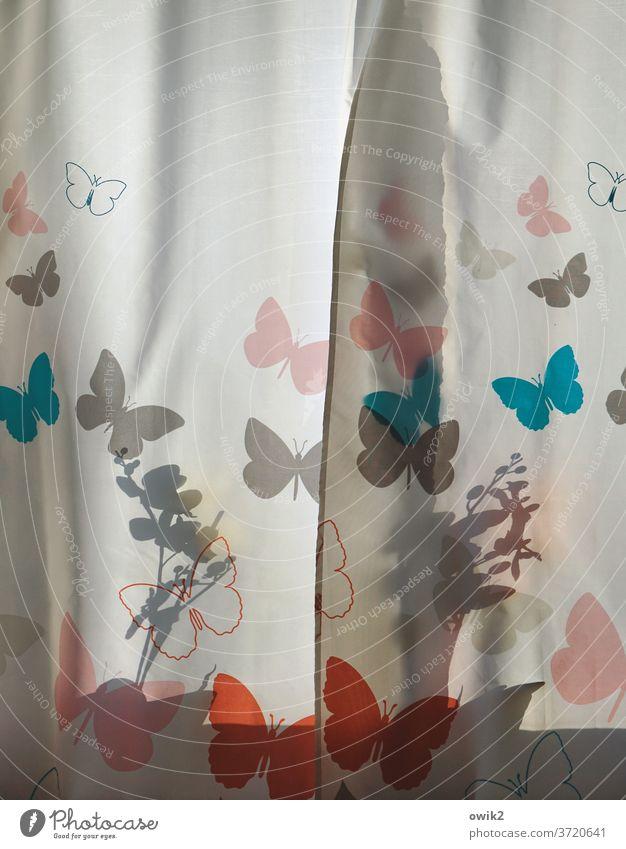 Unruhe verbreiten Vorhang hängen Kunst Bild retro Dekoration & Verzierung Zeichnung Innenaufnahme Farbfoto Detailaufnahme Menschenleer Textfreiraum oben Design