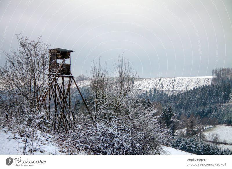 Jägerhochsitz Jagd Hochsitz Natur Außenaufnahme Landschaft Farbfoto Feld Holz Aussicht Wolken Baum Himmel Wald Leiter Horizont Ferne ruhig Einsamkeit Turm weiß