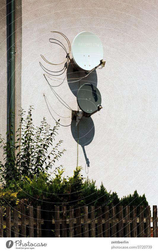 Satellitenschüsseln mit Lattenzaun kleinstadt menschenleer ort sachsen-anhalt sandersdorf siedlung sommer textfreiraum urban wohnen satellitenschüsselm empfang