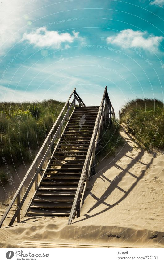 Stairway to... Himmel Ferien & Urlaub & Reisen Sommer Meer Erholung Landschaft Wolken Ferne Strand Umwelt Wärme Gras Küste Holz Freiheit braun