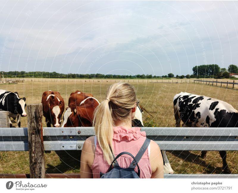 Blonde Frau schaut auf Kühe auf Weide blond Kuh Tier Landwirtschaft Wiese Rind Außenaufnahme Herde Viehbestand Natur Nutztier Rinderhaltung Viehzucht