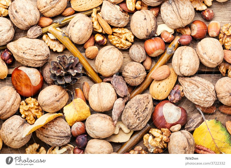 Nüsse aus nächster Nähe mischen Nut Mandel Haselnuss Pekannuss Cashewnuss Erdnuss Walnussholz Samen Kulisse Snack braun Frucht gemischt Vegetarier natürlich