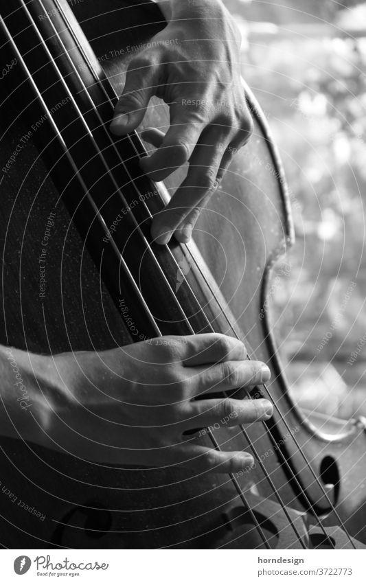 Kontrabass Spielen, zupfen Pizzicato Zupfen Jazz Musiker Musikinstrument Jazzmusik Klassik musizieren Klang Schwarz-Weiß-Fotografie Detailaufnahme Bass Saite
