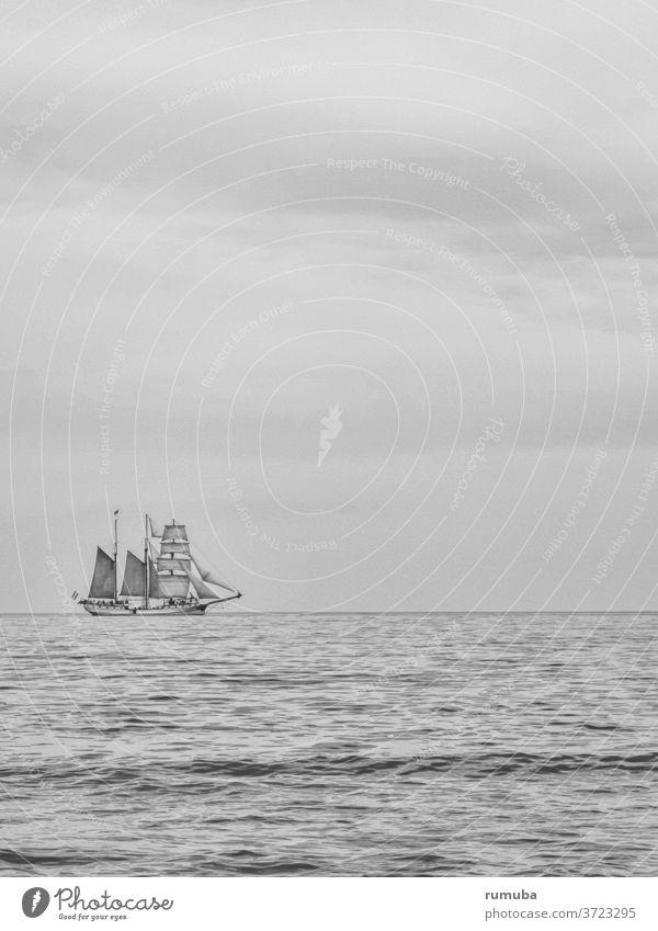 Segelschiff, Ostsee, Himmel Meer Wasser Freiheit Natur Segeln Horizont Fernweh Einsamkeit Sommer Außenaufnahme Tag Landschaft Ferne friedlich... Erholung Schiff