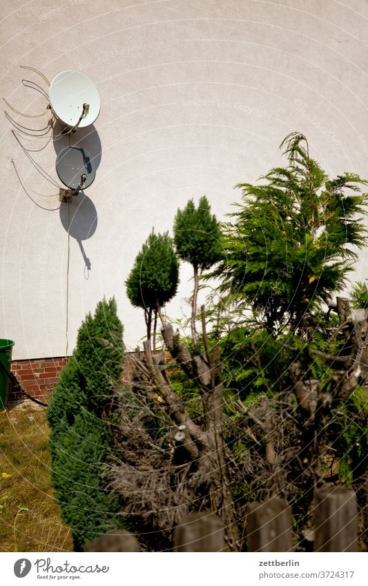 Satellitenschüsseln kleinstadt menschenleer ort sachsen-anhalt sandersdorf siedlung sommer textfreiraum urban wohnen satellitenschüsselm empfang