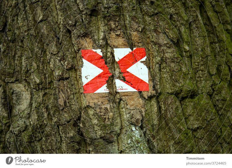 Dem starken Wachstum konnte die Wegmarkierung nicht mehr standhalten Baum Baumstamm Rinde Holz Schilder & Markierungen Kreuz braun rot weiß Außenaufnahme