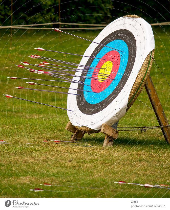 Ziel Bogenschießen Bogensport Bogenschießen-Ziel Pfeil Pfeile Sport Freizeit Natur im Freien Holzplatte hölzern Gras mittelalterlich
