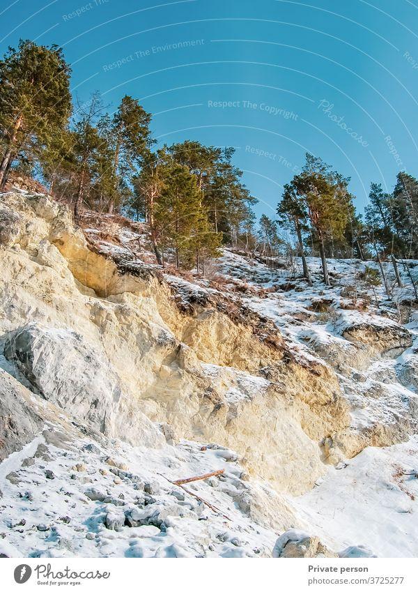 Kiefern in den Bergen gegen den blauen Himmel Berge u. Gebirge Baum Wachstum Felsen Stein Natur Windstille Tag grün Schönheit in der Natur Friedliche Landschaft