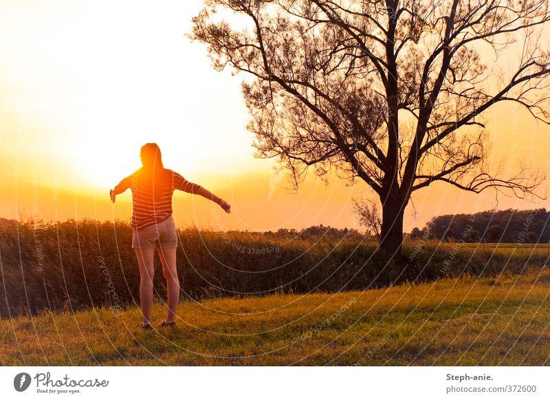 Liebe Sonne, ... feminin Junge Frau Jugendliche 1 Mensch 13-18 Jahre Kind Himmel Sonnenaufgang Sonnenuntergang Sommer Schönes Wetter Baum Wiese Shorts genießen