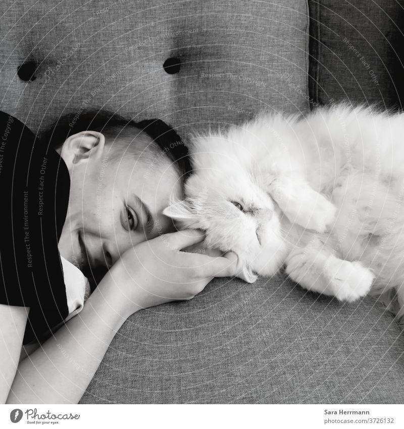 Junge mit weißer Katze Kindheit Liebe Haustier Freundschaft liebevoll