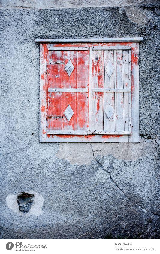 das rote Fenster Ausflug Abenteuer Haus Kunst Printmedien Sommer Wetter Schönes Wetter Wald Menschenleer Hochhaus Ruine Bauwerk Gebäude Mauer Wand Fassade Stein