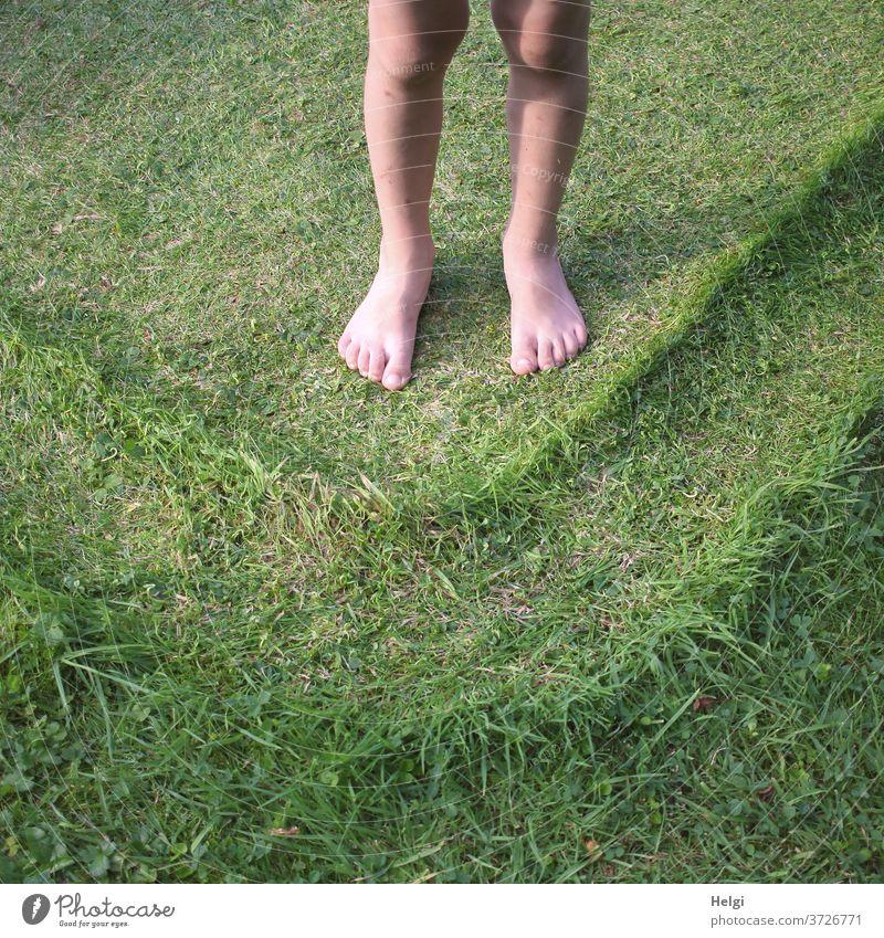 Kinderfüße barfuß auf dem Rasen, dem vom Plantschbecken ein Muster aufgedrückt wurde Beine Füße Wiese Struktur platt Sommer Gras Außenaufnahme Garten Natur Fuß