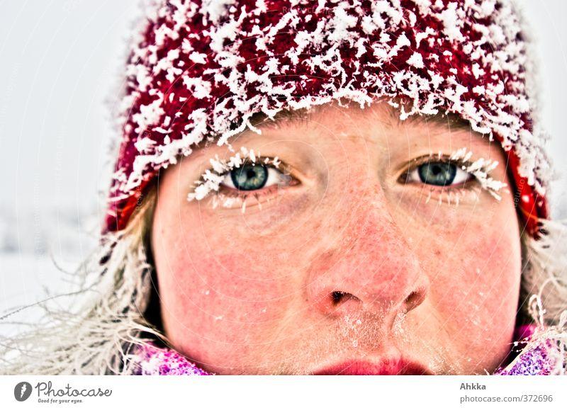 Gesicht einer jungen Frau im Winter, vereiste Wimpern und Haare, sehr kalt schön Junge Frau Jugendliche Leben Kopf Auge glänzend Ferien & Urlaub & Reisen