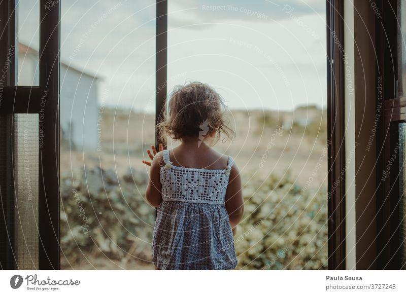 Kind schaut durch Fenster Rückansicht Kindheit zu Hause zu Hause bleiben im Innenbereich 1-3 Jahre Farbfoto Interesse Kontrast Licht Tag Haare & Frisuren
