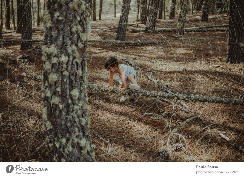 Kleines Mädchen spielt im Wald Kind Kinderspiel Kindheit Spielen Spaß haben unschuldig Abenteuer Natur Holz in den Wald Fröhlichkeit Sommer Kleinkind Mensch Tag