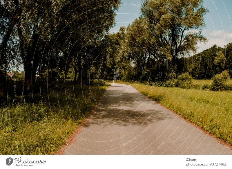 Menschenleere Landstraße in Bayern landstraße menschenleer natur grün sommer sonne radweg rennradfahren bäume sträucher wiese einsam dorf ländlich schatten