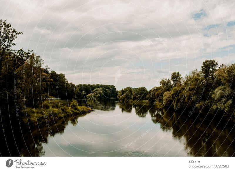Donau donau wasser gewässer fluß sommer sonne sträucher grün bäume spiegelung reflektion himmel blau wolken natur landschaft bayern Gewässer Außenaufnahme