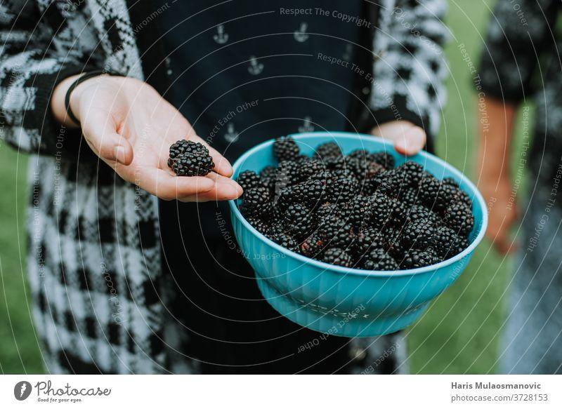 Mit frischen, biologisch gepflückten Brombeeren aus dem Garten Ackerbau Hintergrund schwarz Schalen & Schüsseln braun Nahaufnahme Kaffee dunkel Lebensmittel
