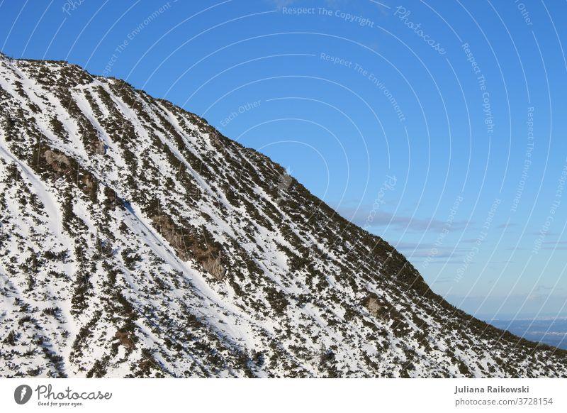 Berg mit Schnee Berge u. Gebirge Natur Landschaft Himmel Felsen Gipfel Alpen Außenaufnahme Schneebedeckte Gipfel Menschenleer Tag Farbfoto Schönes Wetter Umwelt