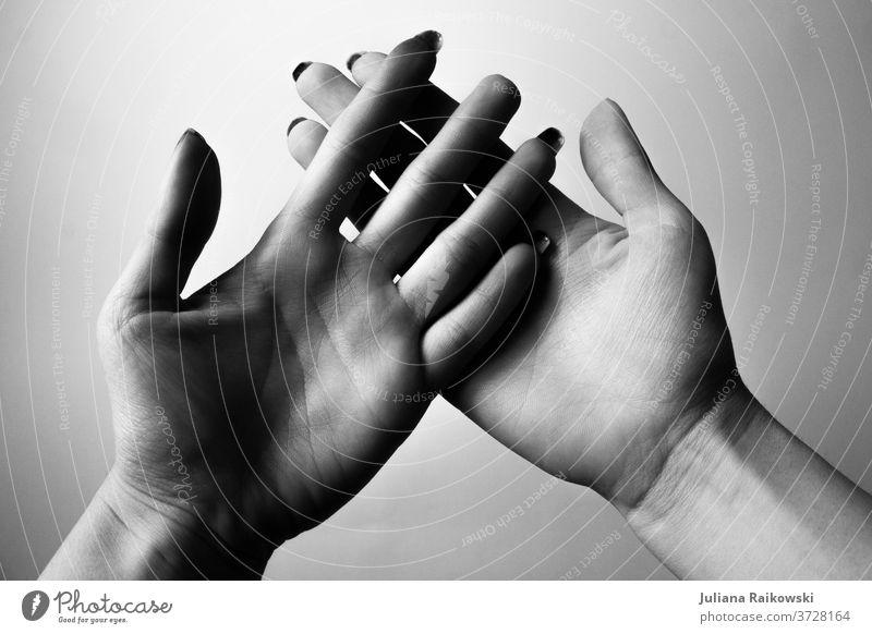 geöffnete Hände in schwarz-weiß Frau Hand Finger Mensch Detailaufnahme Vertrauen Nahaufnahme berühren Freundschaft Sympathie Erwachsene festhalten feminin