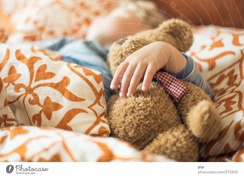 kuschelbär Mensch Kind schön Hand ruhig Liebe hell träumen Kindheit Finger niedlich schlafen Bettwäsche Kleinkind Geborgenheit Umarmen