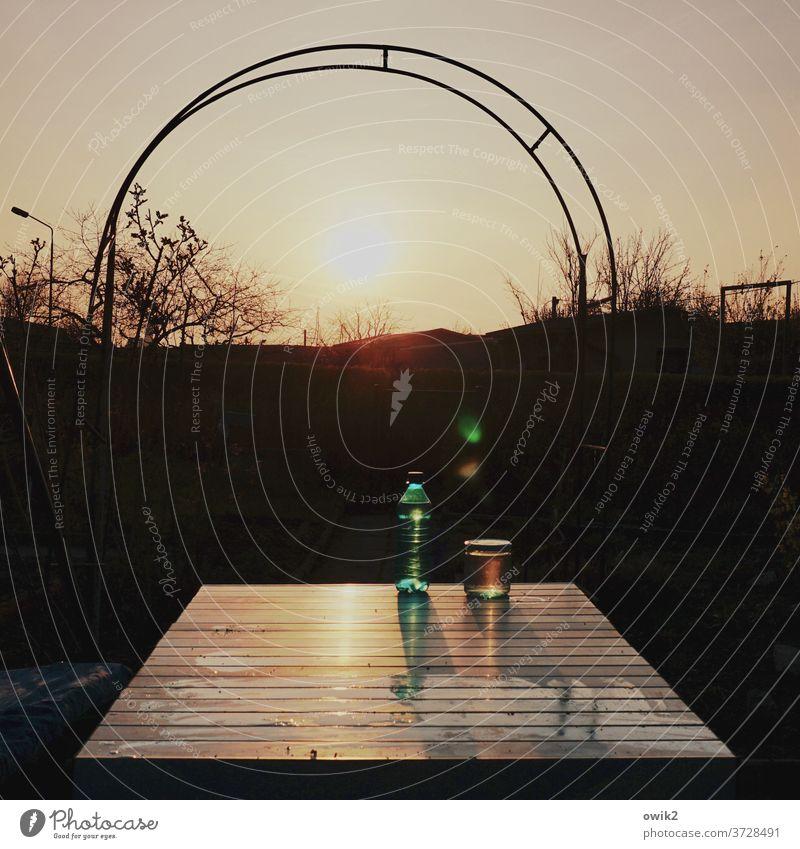 Spätromanisch Garten Schrebergarten Tor Metall leuchten Wolkenloser Himmel Schönes Wetter Sträucher Außenaufnahme Detailaufnahme Strukturen & Formen